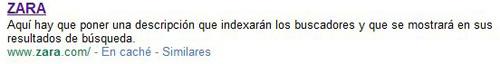Zara: Meta Tag Description con descripción del contenido que hay que poner