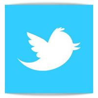 Twitter mejor apuesta que Facebook para las marcas