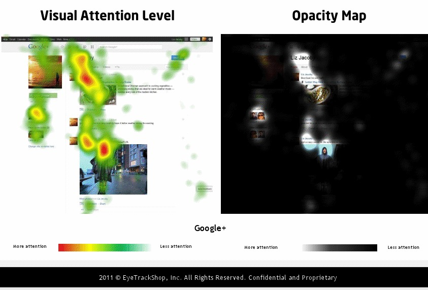 Google +: Though larger than those on most other networks, the profile photo on Google+ didn't attract as much attention.