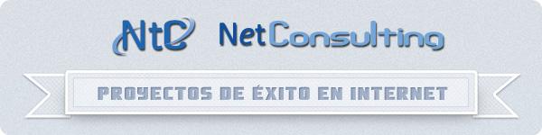 NetConsulting: Proyectos de éxito en Internet