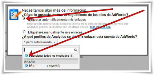 Enlazar Google AdWords con Google Analytics - Paso 08 de 10