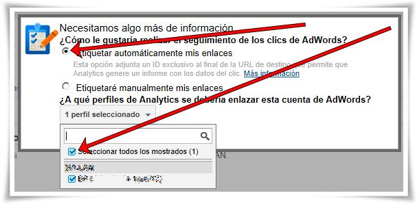 Enlazar Google AdWords con Google Analytics - Paso 08 de 10
