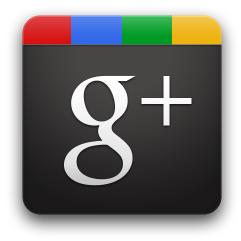 Ya es posible transferir círculos y conexiones de Google+