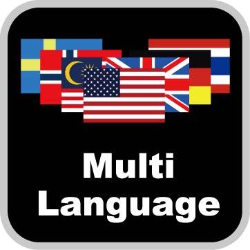 Google y el contenido multi-lenguaje