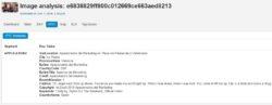Ejemplo de metadatos IPTC extraidos con ImageForensic (imagen: coldplay-video-capture.jpg)