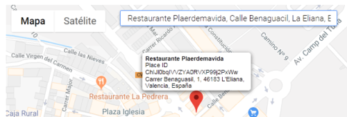 ID de Plaerdemavida en Google Maps